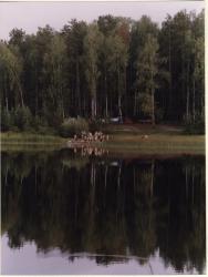 m013.jpg